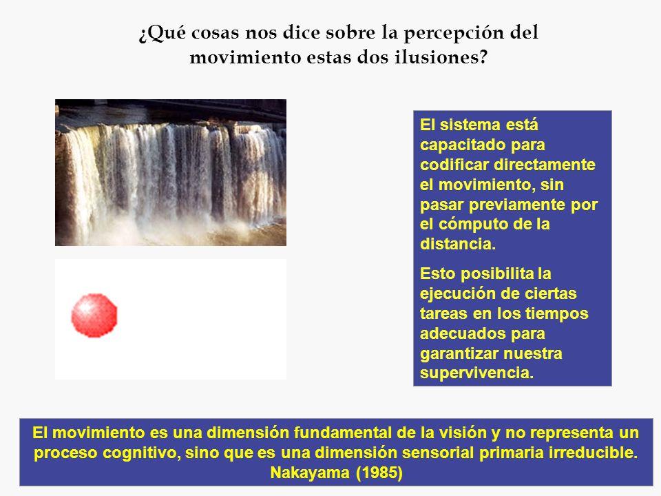 Experiencia de movimiento inducida por estimulación lumínica con determinados parámetros espaciales y temporales x1x1 x2x2 El primer experimento que a