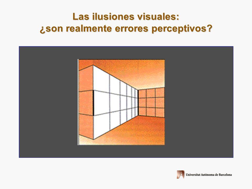 Ilusiones top-down: requieren del conocimiento del funcionamiento del mundo (explicaciones constructivistas) Ginsburg, A.