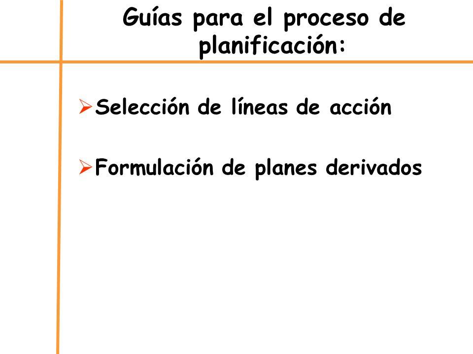 Guías para el proceso de planificación: Selección de líneas de acción Formulación de planes derivados