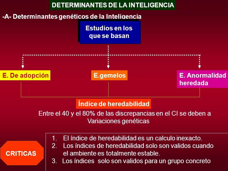 DETERMINANTES DE LA INTELIGENCIA -A- Determinantes genéticos de la Inteligencia Estudios en los que se basan E. De adopciónE.gemelosE. Anormalidad her