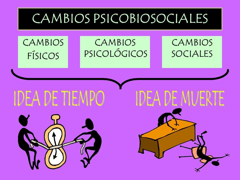 CAMBIOS PSICOBIOSOCIALES CAMBIOS FÍSICOS CAMBIOS PSICOLÓGICOS CAMBIOS SOCIALES