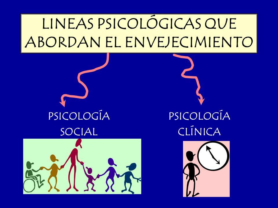 LINEAS PSICOLÓGICAS QUE ABORDAN EL ENVEJECIMIENTO PSICOLOGÍA SOCIAL PSICOLOGÍA CLÍNICA