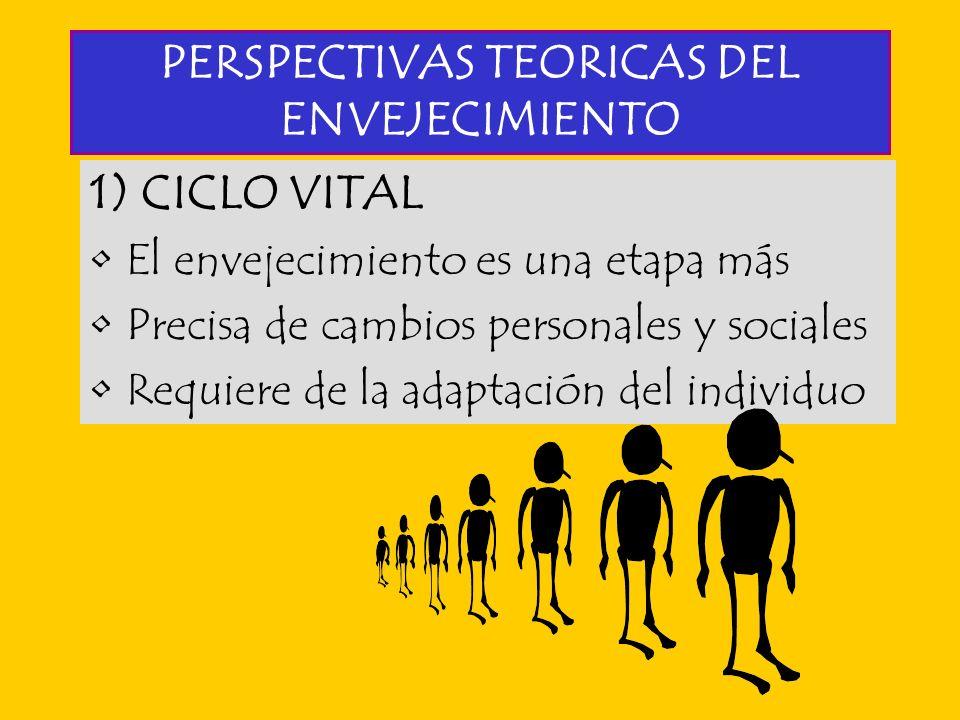 PERSPECTIVAS TEORICAS DEL ENVEJECIMIENTO 1) CICLO VITAL El envejecimiento es una etapa más Precisa de cambios personales y sociales Requiere de la ada