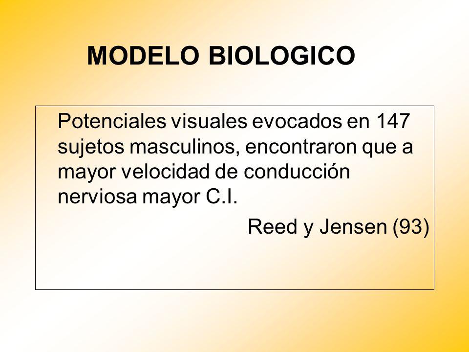 MODELO BIOLOGICO Potenciales visuales evocados en 147 sujetos masculinos, encontraron que a mayor velocidad de conducción nerviosa mayor C.I. Reed y J