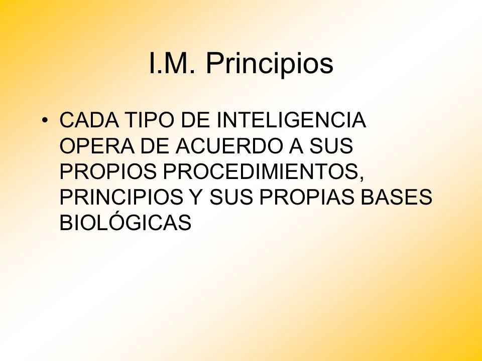 I.M. Principios CADA TIPO DE INTELIGENCIA OPERA DE ACUERDO A SUS PROPIOS PROCEDIMIENTOS, PRINCIPIOS Y SUS PROPIAS BASES BIOLÓGICAS
