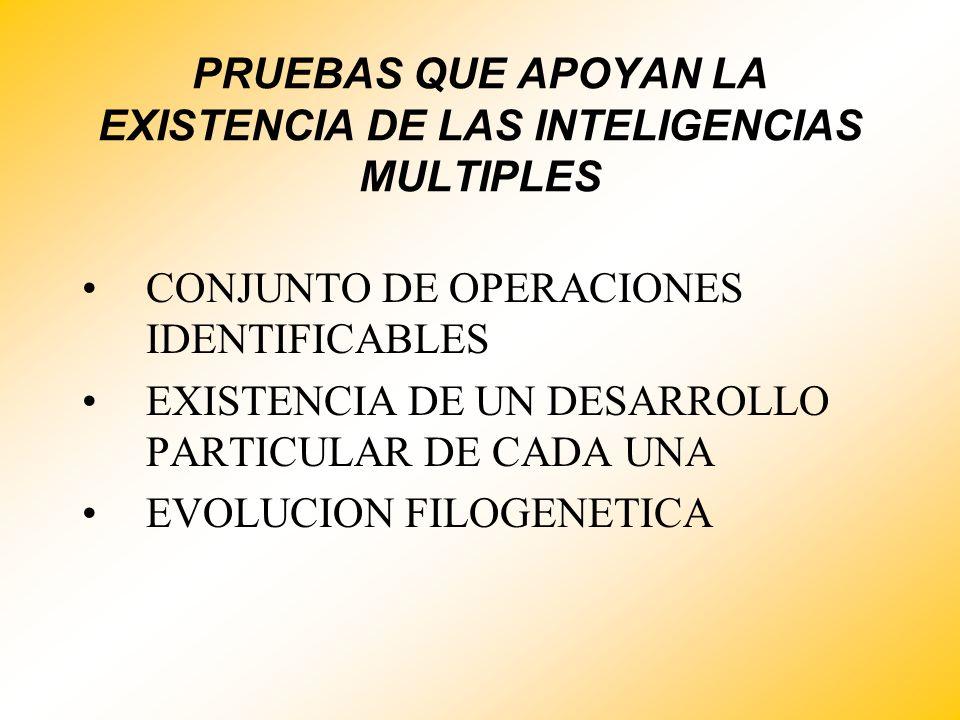PRUEBAS QUE APOYAN LA EXISTENCIA DE LAS INTELIGENCIAS MULTIPLES CONJUNTO DE OPERACIONES IDENTIFICABLES EXISTENCIA DE UN DESARROLLO PARTICULAR DE CADA