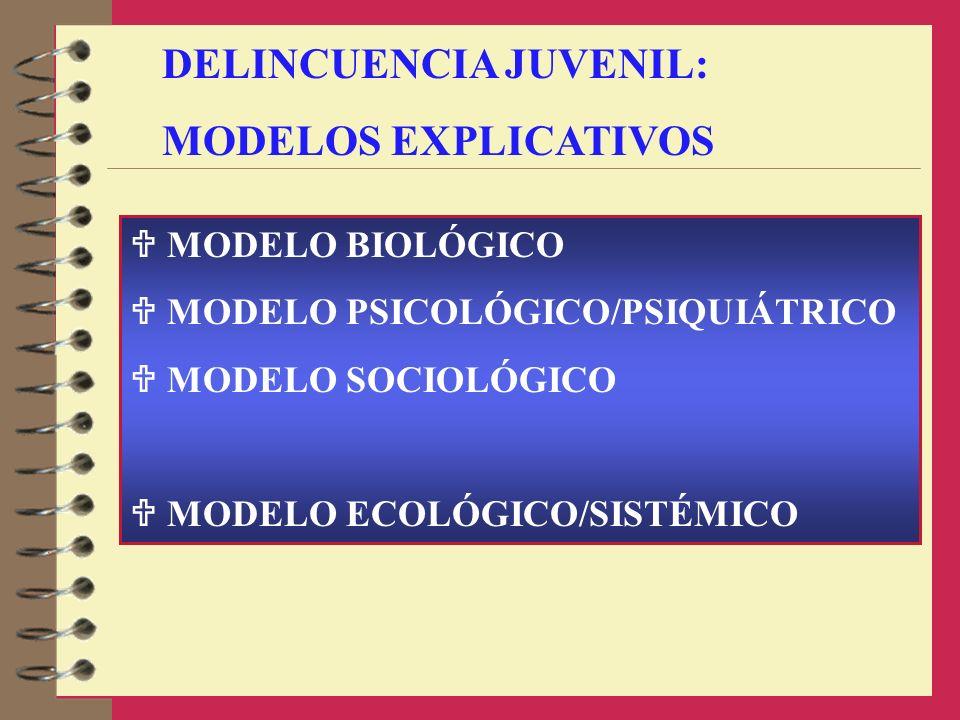 DELINCUENCIA JUVENIL: MODELOS EXPLICATIVOS MODELO BIOLÓGICO MODELO PSICOLÓGICO/PSIQUIÁTRICO MODELO SOCIOLÓGICO MODELO ECOLÓGICO/SISTÉMICO