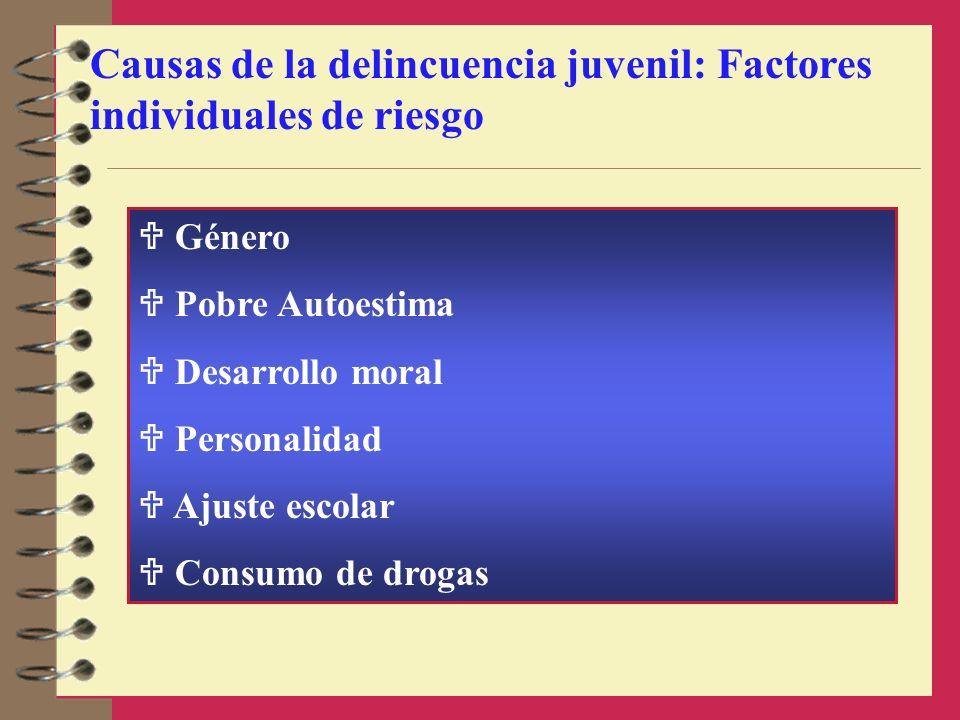 Causas de la delincuencia juvenil: Factores individuales de riesgo Género Pobre Autoestima Desarrollo moral Personalidad Ajuste escolar Consumo de dro