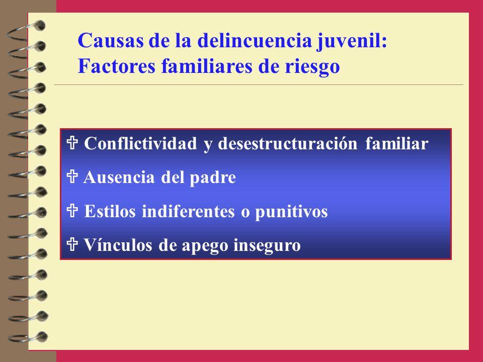 Conflictividad y desestructuración familiar Ausencia del padre Estilos indiferentes o punitivos Vínculos de apego inseguro Causas de la delincuencia j