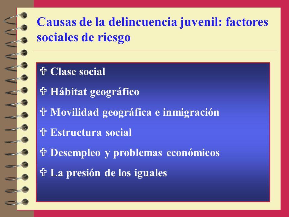 Causas de la delincuencia juvenil: factores sociales de riesgo Clase social Hábitat geográfico Movilidad geográfica e inmigración Estructura social De