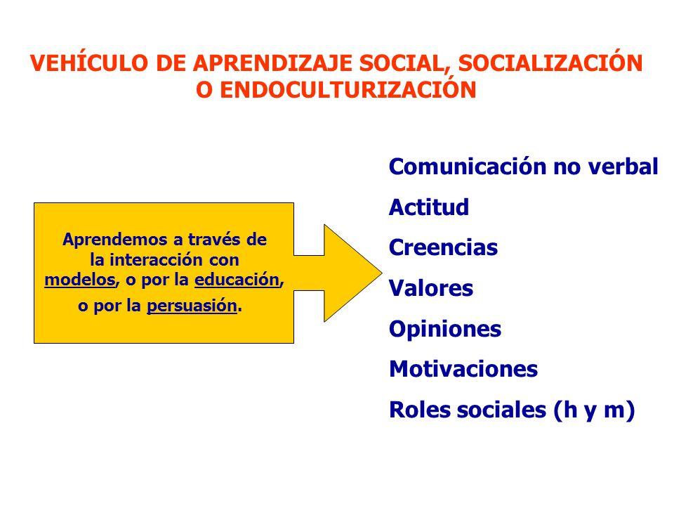 VEHÍCULO DE APRENDIZAJE SOCIAL, SOCIALIZACIÓN O ENDOCULTURIZACIÓN Aprendemos a través de la interacción con modelos, o por la educación, o por la persuasión.