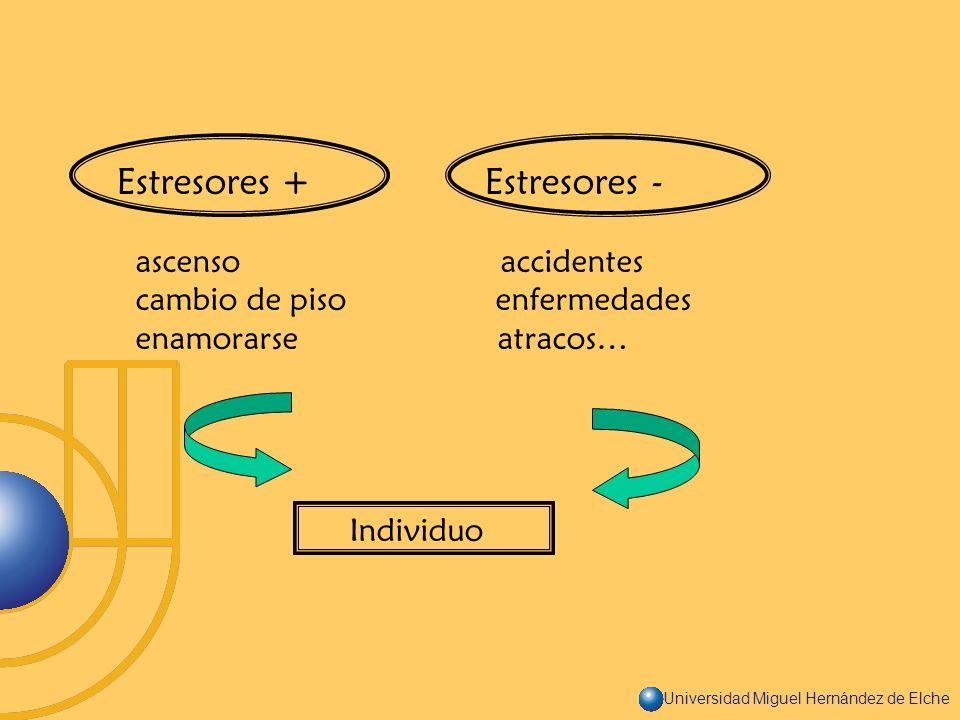 Universidad Miguel Hernández de Elche Estresores + Estresores - ascenso accidentes cambio de piso enfermedades enamorarse atracos… Individuo