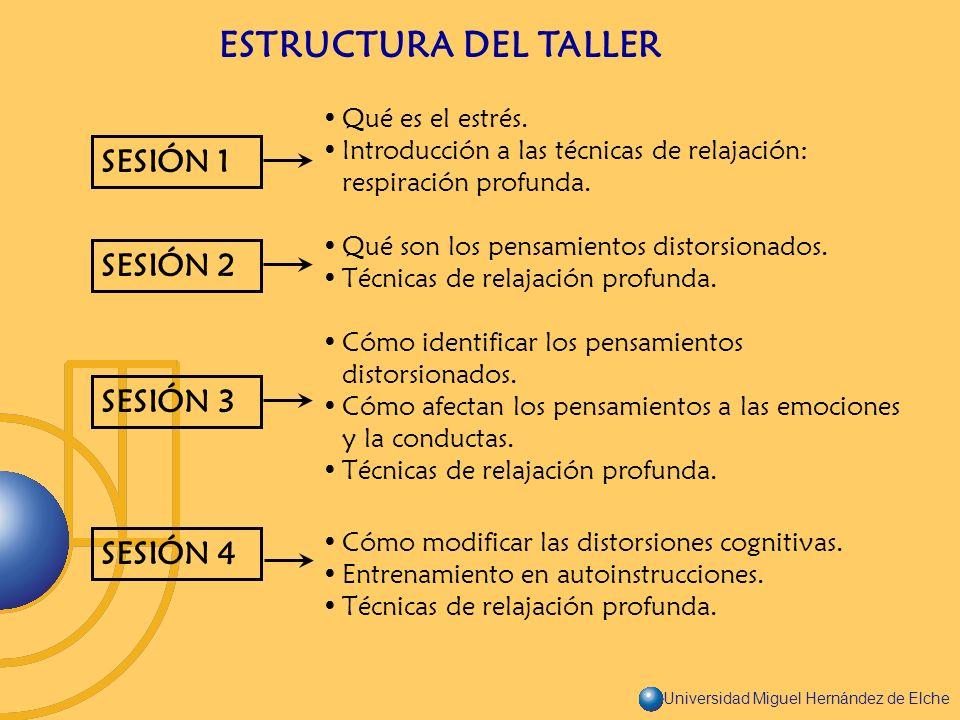 Universidad Miguel Hernández de Elche ESTRUCTURA DEL TALLER SESIÓN 1 SESIÓN 2 SESIÓN 3 SESIÓN 4 Qué es el estrés. Introducción a las técnicas de relaj
