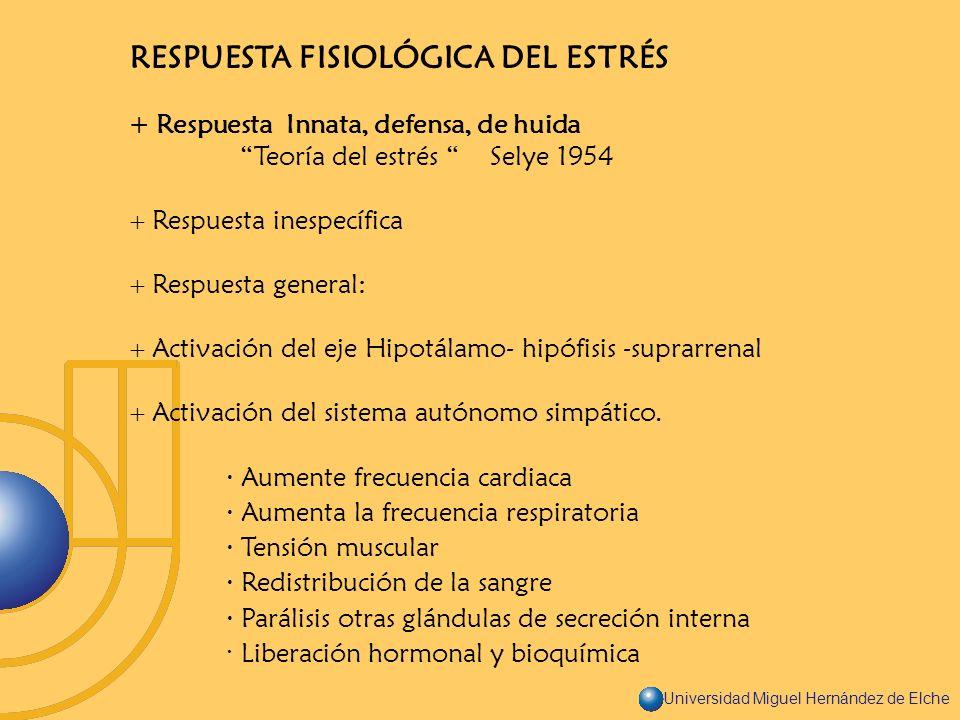 Universidad Miguel Hernández de Elche RESPUESTA FISIOLÓGICA DEL ESTRÉS + Respuesta Innata, defensa, de huida Teoría del estrés Selye 1954 Respuesta in