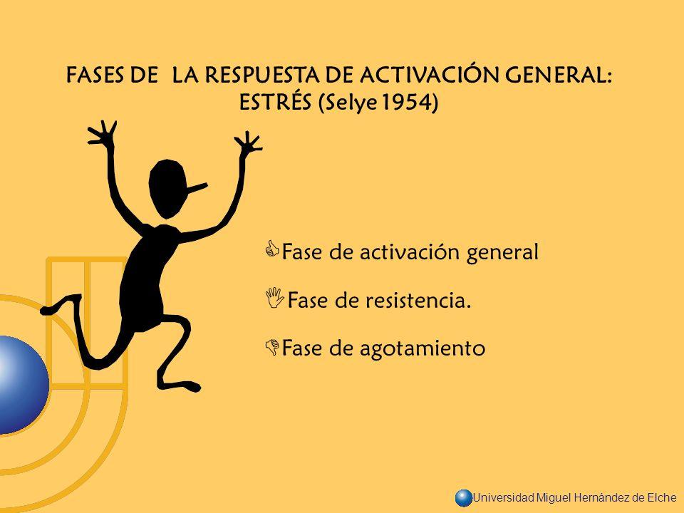 Universidad Miguel Hernández de Elche FASES DE LA RESPUESTA DE ACTIVACIÓN GENERAL: ESTRÉS (Selye 1954) Fase de activación general Fase de resistencia.