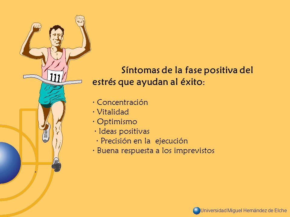 Universidad Miguel Hernández de Elche Síntomas de la fase positiva del estrés que ayudan al éxito : · Concentración · Vitalidad · Optimismo · Ideas po