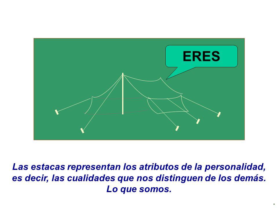 . Las estacas representan los atributos de la personalidad, es decir, las cualidades que nos distinguen de los demás. Lo que somos. ERES