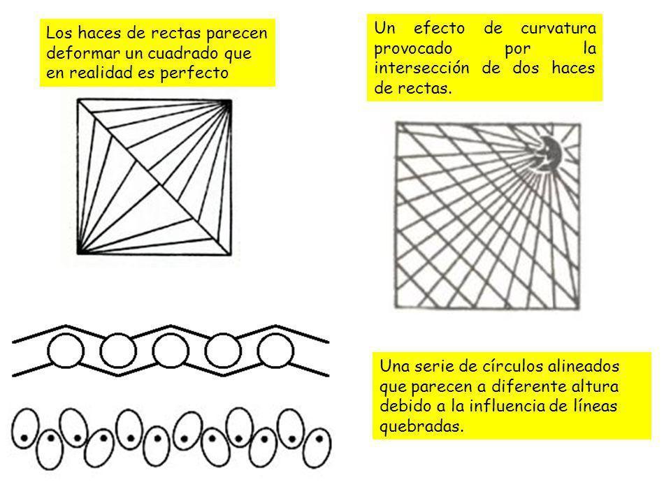 Una serie de círculos alineados que parecen a diferente altura debido a la influencia de líneas quebradas. Los haces de rectas parecen deformar un cua
