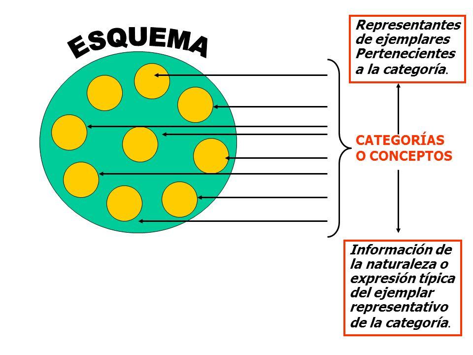 Principio 6: LAS CREENCIAS ACTUALES PUEDEN SER CAMBIADAS, AUNQUE TAL CAMBIO NO SEA FÁCIL.