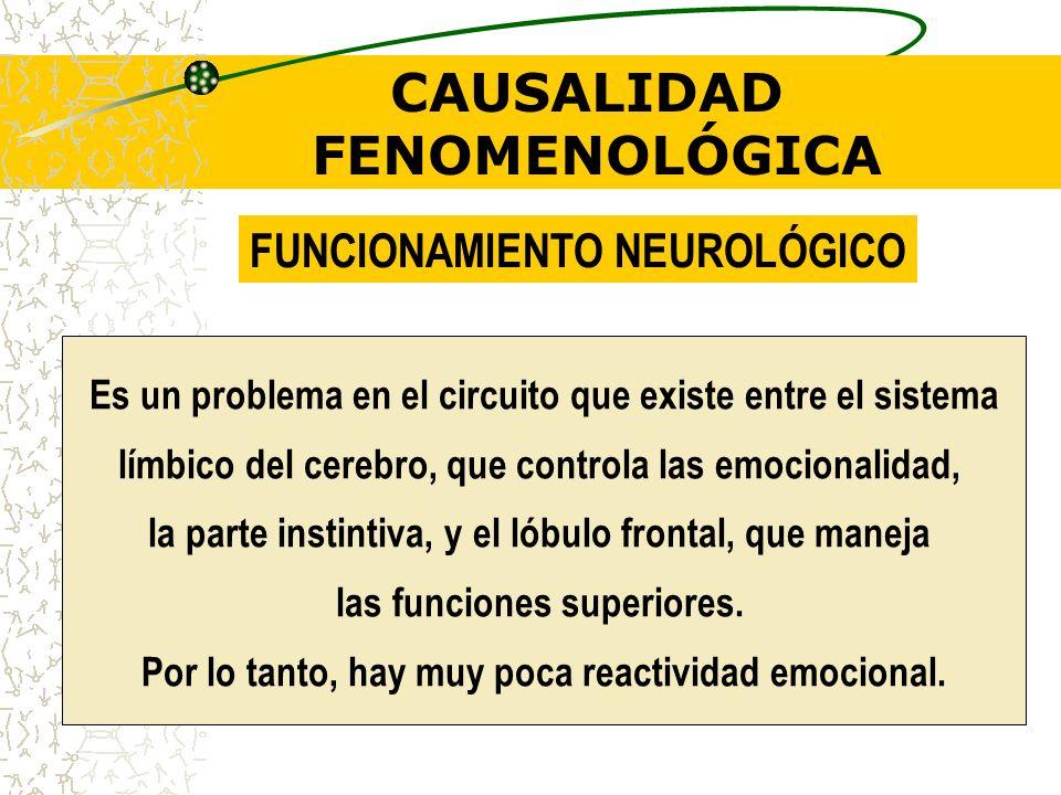 CAUSALIDAD FENOMENOLÓGICA Hiporeactivos: no reaccionan a estímulos lúdicos. Desarrollo de indiferencia por actos violentos (sangre fría) Placer por la