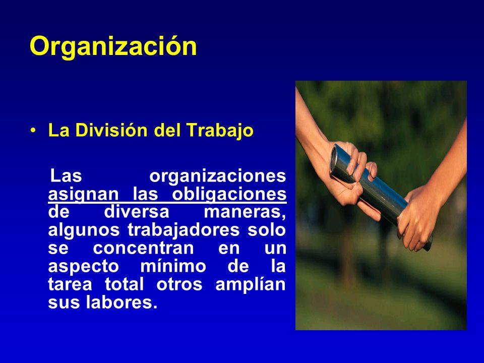 Organización La División del Trabajo Las organizaciones asignan las obligaciones de diversa maneras, algunos trabajadores solo se concentran en un asp