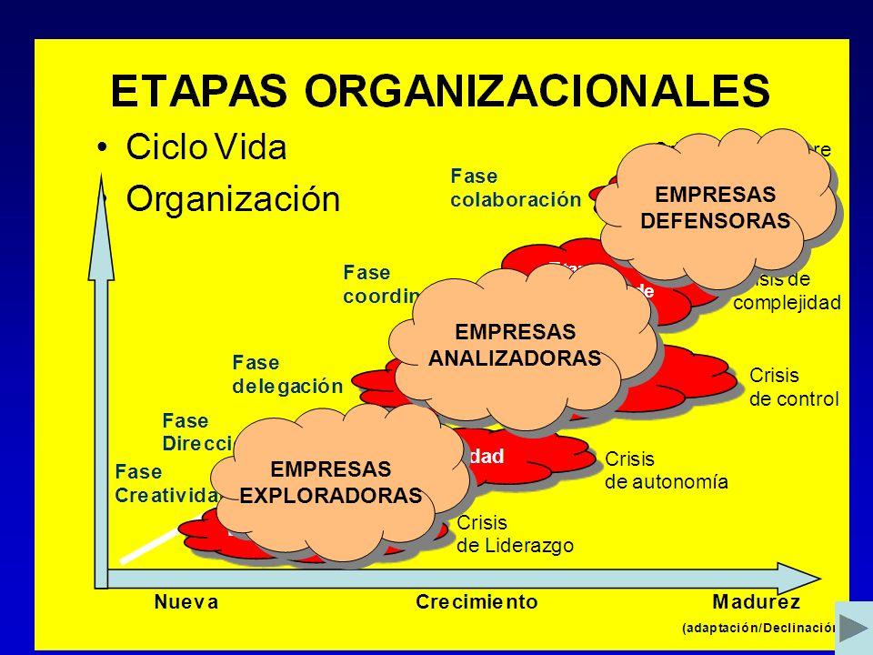 Organización La Estructura Funcional Tipos de Estructuras Funcionales Estructura Simple Aquí el gerente centraliza la toma de decisiones, en la medida que crece se divide en departamentos.