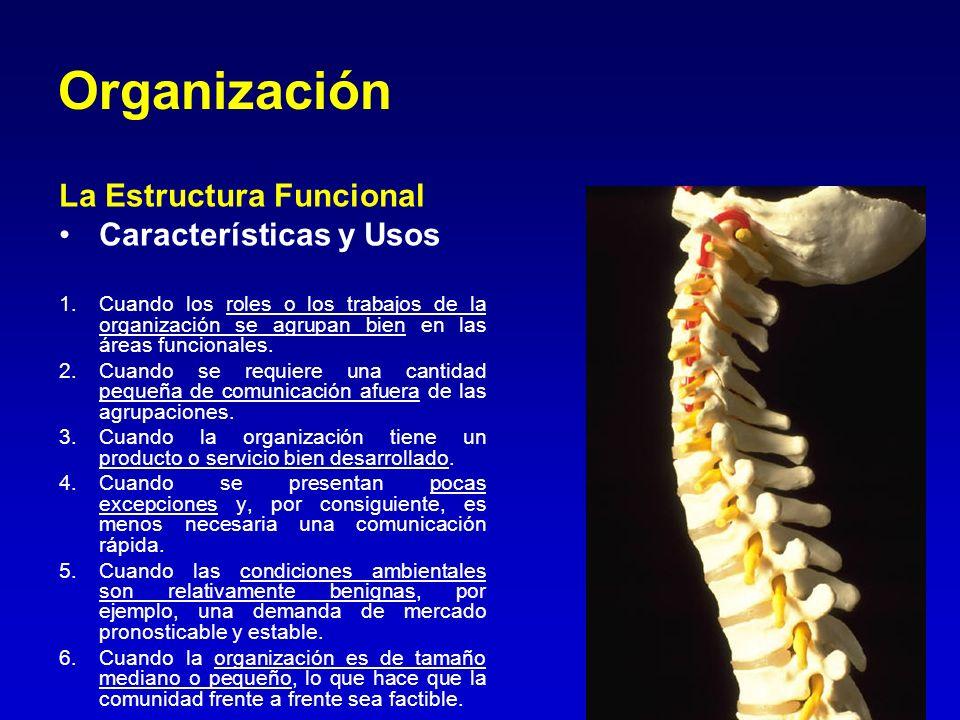 Organización La Estructura Funcional Características y Usos 1.Cuando los roles o los trabajos de la organización se agrupan bien en las áreas funciona