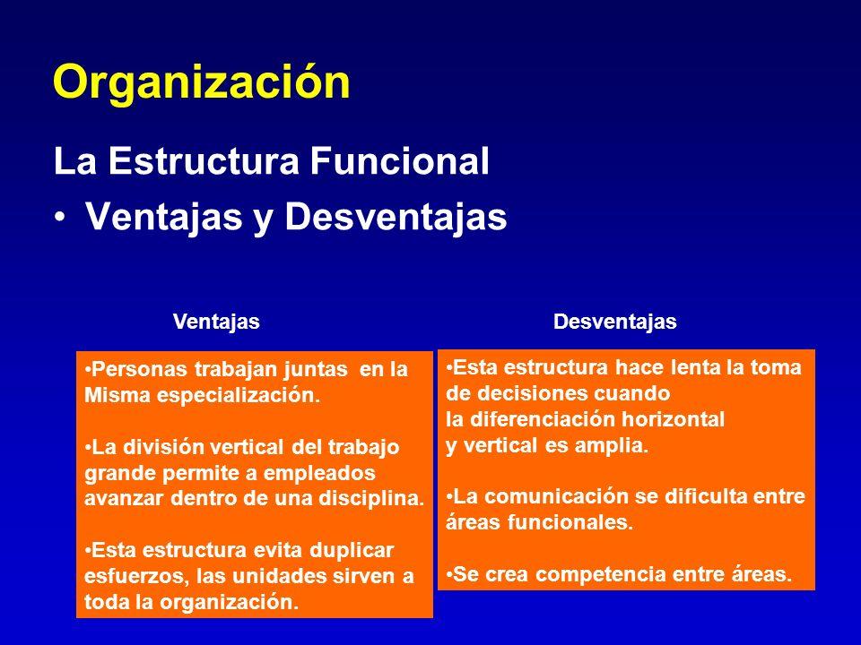 Organización La Estructura Funcional Ventajas y Desventajas Personas trabajan juntas en la Misma especialización. La división vertical del trabajo gra
