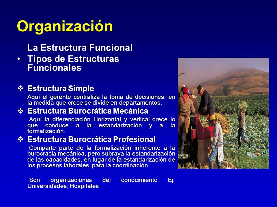 Organización La Estructura Funcional Tipos de Estructuras Funcionales Estructura Simple Aquí el gerente centraliza la toma de decisiones, en la medida