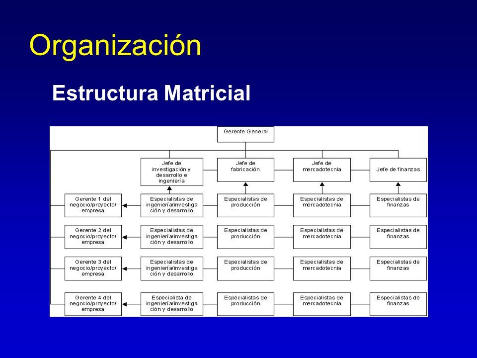 Organización Estructura Matricial