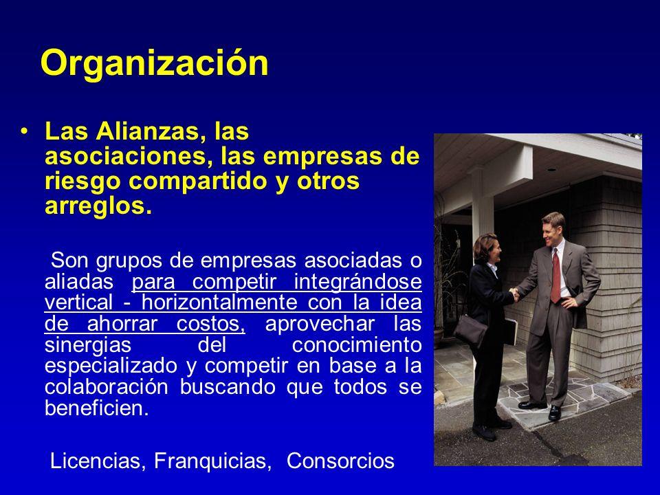 Organización Las Alianzas, las asociaciones, las empresas de riesgo compartido y otros arreglos. Son grupos de empresas asociadas o aliadas para compe