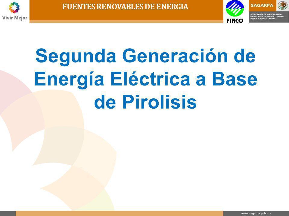 FUENTES RENOVABLES DE ENERGIA 1.- Combustión 2.- Gasificación 3.- Pirolisis 4.- Fermentación