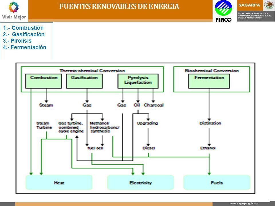 FUENTES RENOVABLES DE ENERGIA 1.- COMBUSTION 2.- GASIFICACION 3.- PIROLISIS 4.- FERMENTACION 1.Producción de Calor 2.Calentamiento de Agua 3.Generación de Vapor 4.Movimiento de una Turbina a base de Vapor 5.Generación de Electricidad