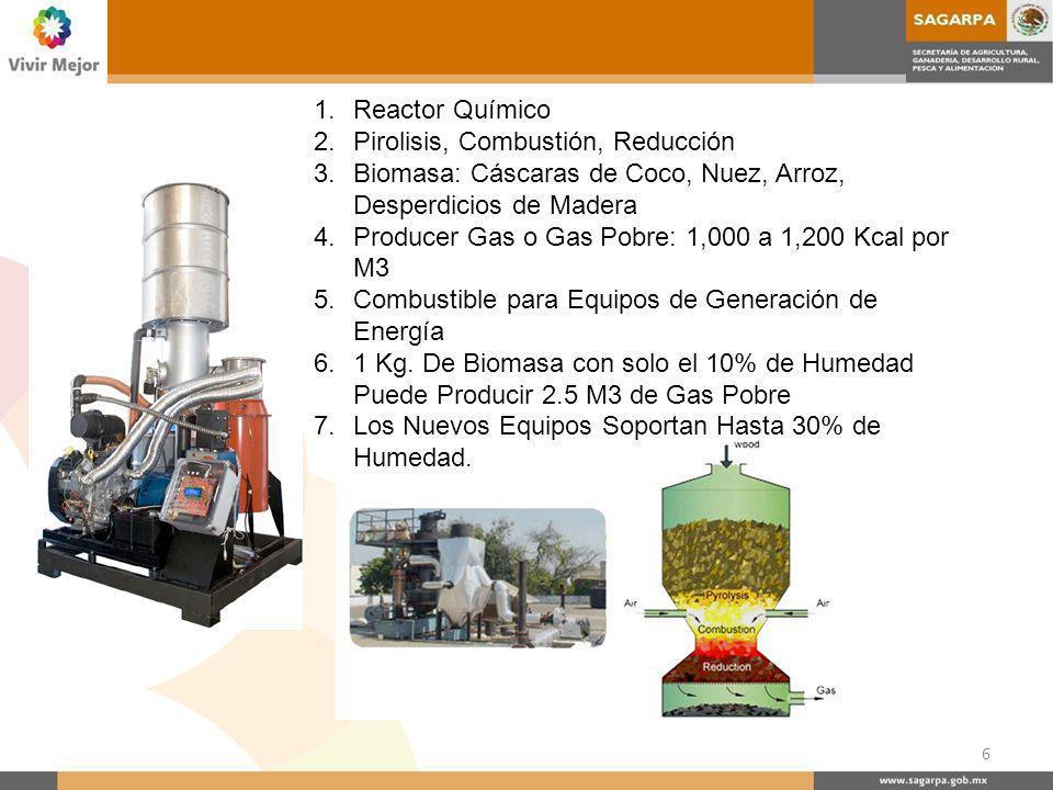 Sistema de Gasificación de la Biomasa El Sistema Convierte la Biomasa en Gas (SYNGAS) por Medio de Un Proceso Denominado PIROLISIS El sistema consiste en: Gasificador de Biomasa Generador de Electricidad de SYNGAS Sistema Electrónico de Control.