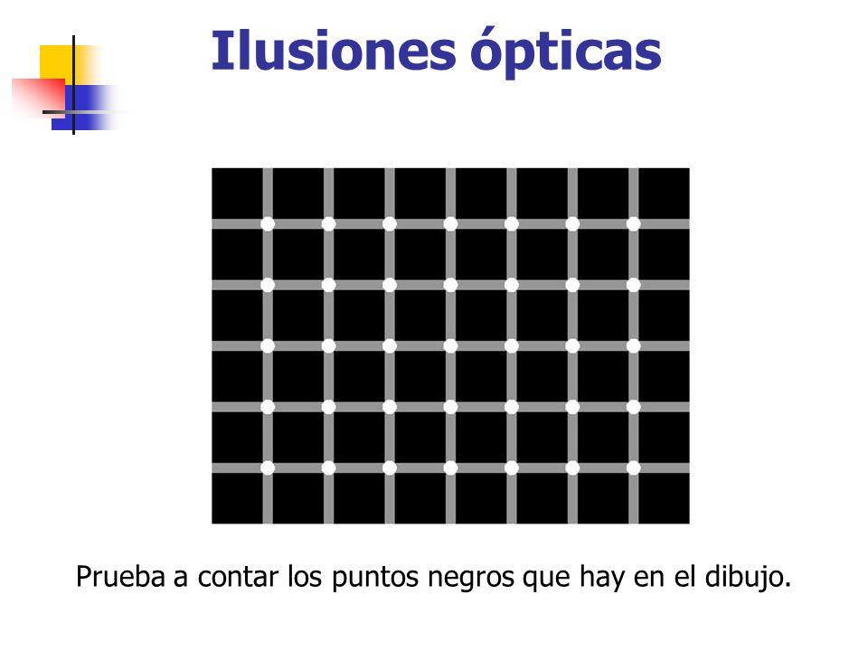 Prueba a contar los puntos negros que hay en el dibujo. Ilusiones ópticas