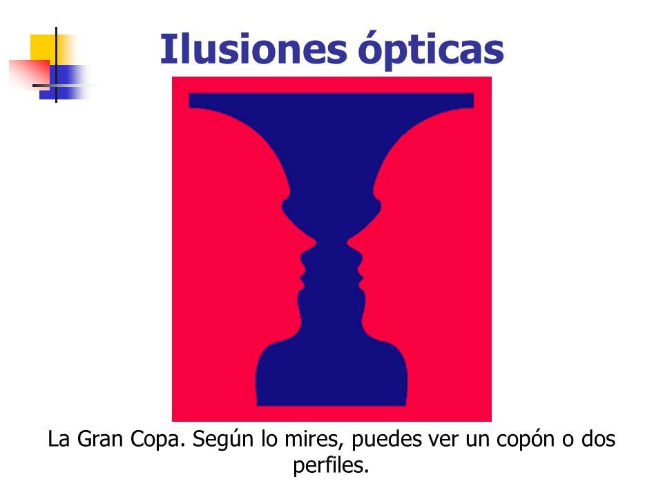 Ilusiones ópticas La Gran Copa. Según lo mires, puedes ver un copón o dos perfiles.