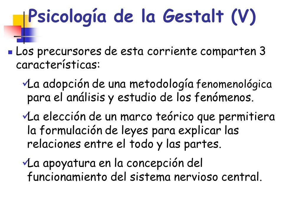 Psicología de la Gestalt (V) Los precursores de esta corriente comparten 3 características: La adopción de una metodología fenomenológica para el anál