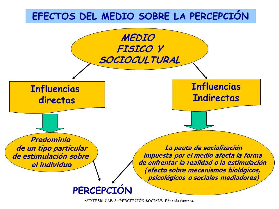 SINTESIS CAP. 3 PERCEPCIÓN SOCIAL. Eduardo Santoro. Influencias directas Influencias Indirectas MEDIO FISICO Y SOCIOCULTURAL Predominio de un tipo par