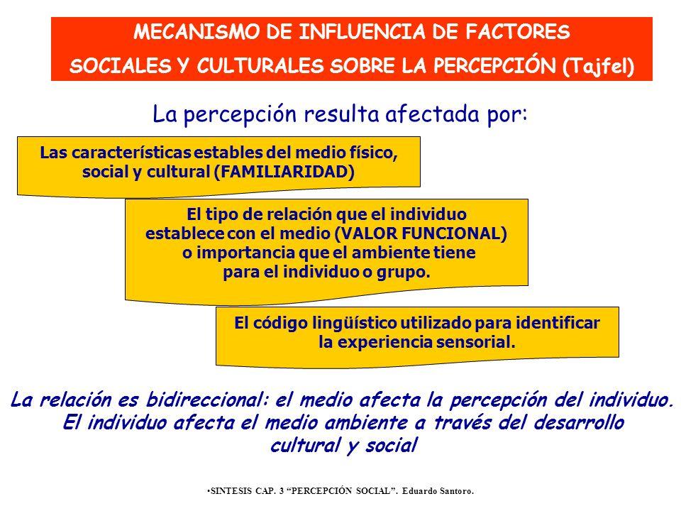 SINTESIS CAP. 3 PERCEPCIÓN SOCIAL. Eduardo Santoro. Las características estables del medio físico, social y cultural (FAMILIARIDAD) El tipo de relació