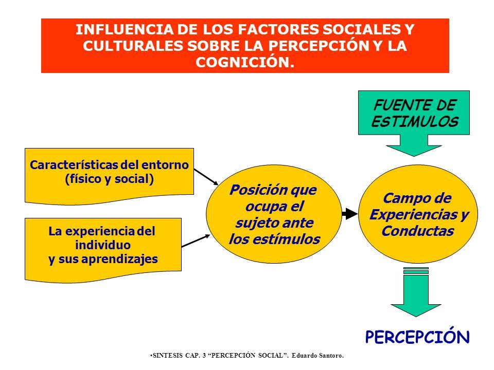 SINTESIS CAP. 3 PERCEPCIÓN SOCIAL. Eduardo Santoro. Características del entorno (físico y social) La experiencia del individuo y sus aprendizajes Posi