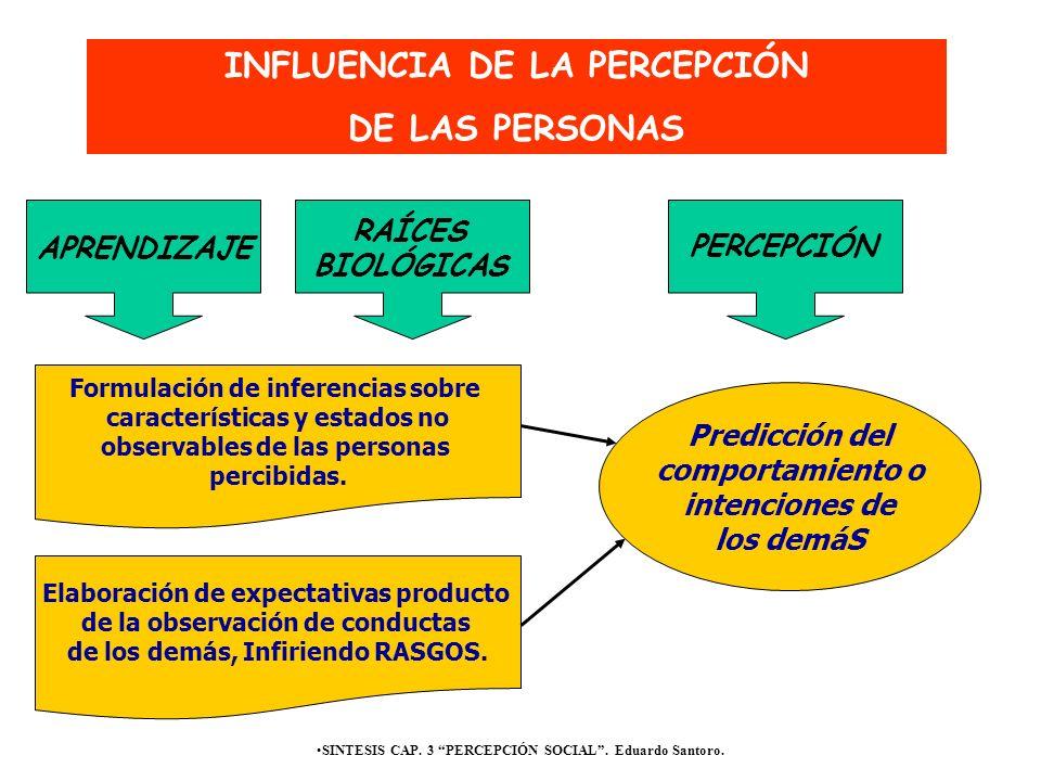 SINTESIS CAP. 3 PERCEPCIÓN SOCIAL. Eduardo Santoro. Formulación de inferencias sobre características y estados no observables de las personas percibid