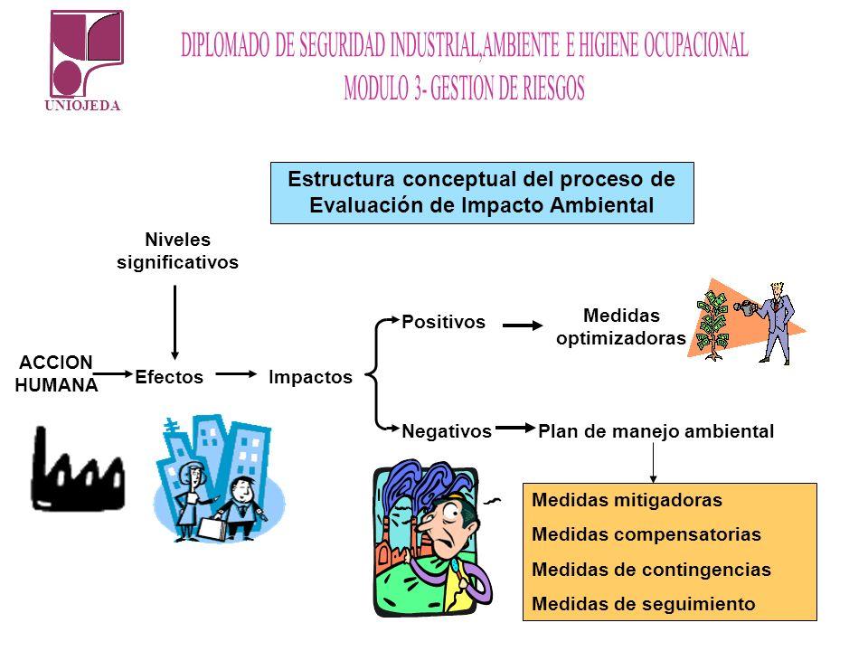 UNIOJEDA Estructura conceptual del proceso de Evaluación de Impacto Ambiental ACCION HUMANA Niveles significativos ImpactosEfectos Positivos Negativos