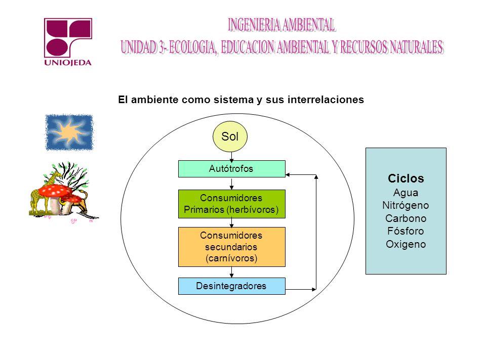 Autótrofos El ambiente como sistema y sus interrelaciones Sol Consumidores Primarios (herbívoros) Consumidores secundarios (carnívoros) Desintegradore