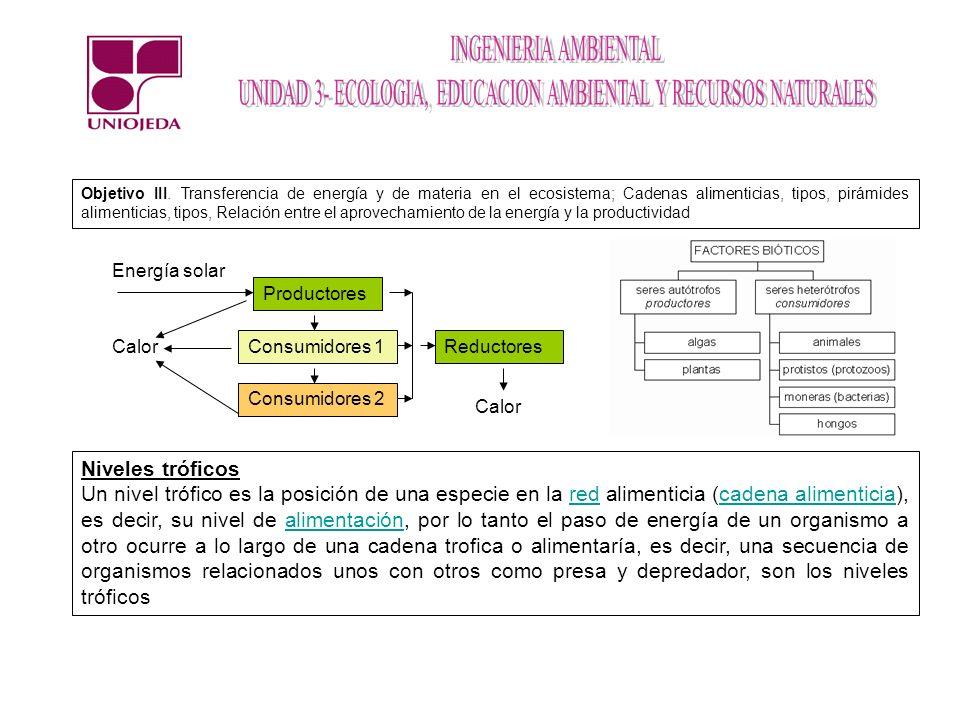 Energía solar Productores Consumidores 1 Consumidores 2 Reductores Calor Objetivo III. Transferencia de energía y de materia en el ecosistema; Cadenas