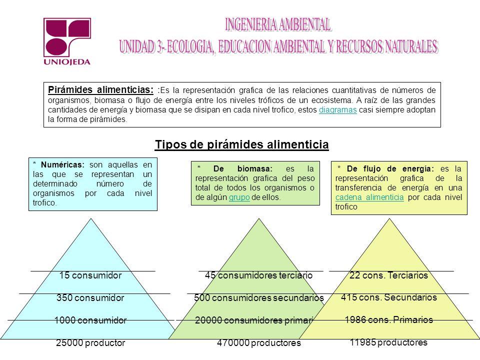 Pirámides alimenticias: : Es la representación grafica de las relaciones cuantitativas de números de organismos, biomasa o flujo de energía entre los