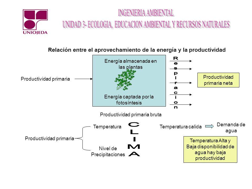 Relación entre el aprovechamiento de la energía y la productividad Productividad primaria Energía almacenada en las plantas Energía captada por la fot