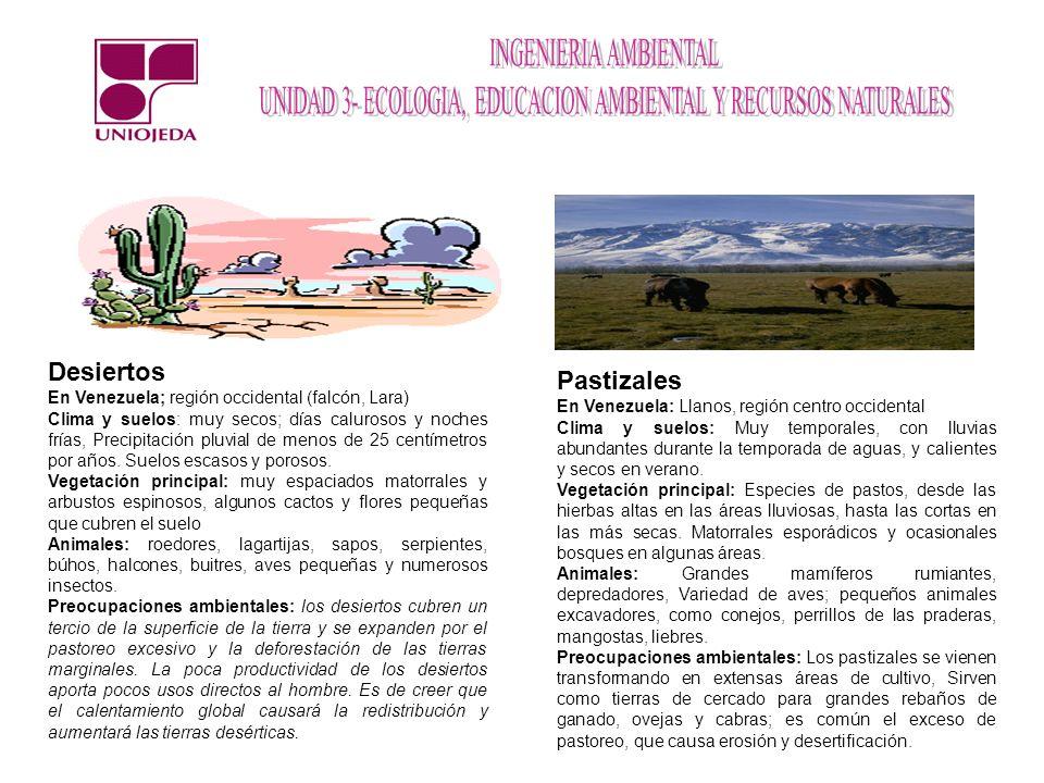 Desiertos En Venezuela; región occidental (falcón, Lara) Clima y suelos: muy secos; días calurosos y noches frías, Precipitación pluvial de menos de 2