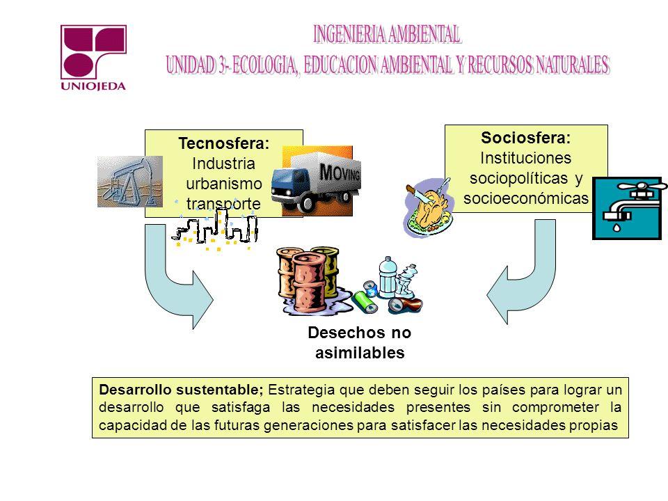 Tecnosfera: Industria urbanismo transporte Sociosfera: Instituciones sociopolíticas y socioeconómicas Desechos no asimilables Desarrollo sustentable;