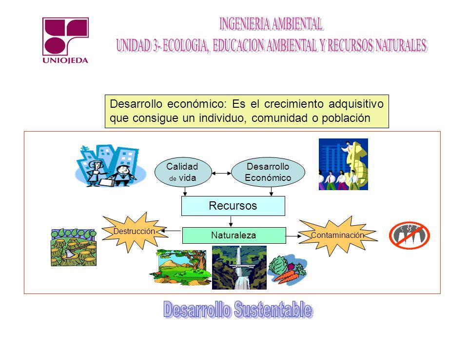 Autótrofos El ambiente como sistema y sus interrelaciones Sol Consumidores Primarios (herbívoros) Consumidores secundarios (carnívoros) Desintegradores Ciclos Agua Nitrógeno Carbono Fósforo Oxigeno