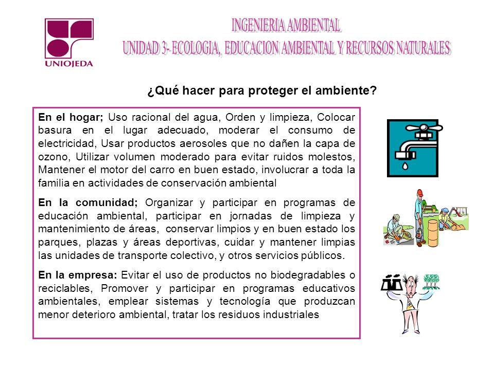 Bosques templados En Venezuela: Región Norte y oriental Clima y suelos: Temporales.